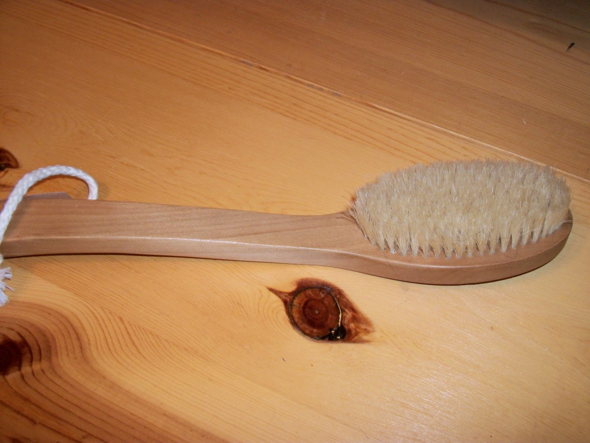 Natural bristle brush; personal photo