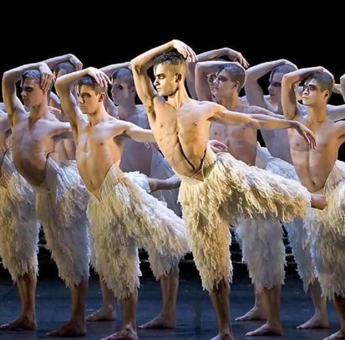 Matthew Bourne's Swan Lake  (no copyright intended)