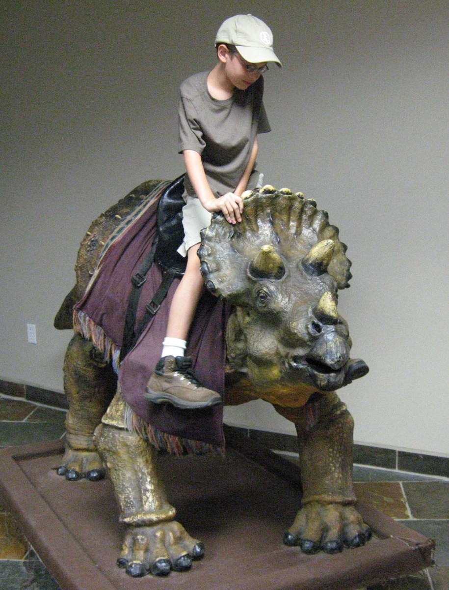 Riding dinosaurs at Creation Museum. Note the Equiped Saddle.