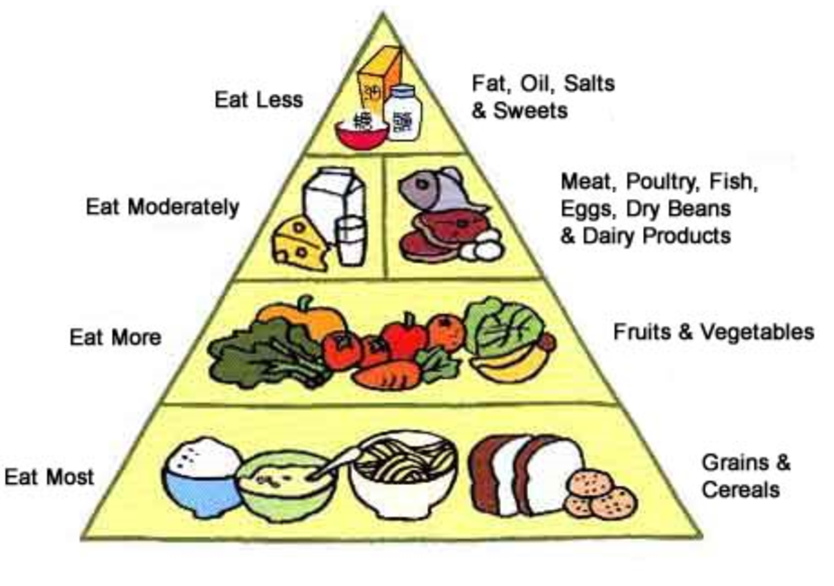 Low Carbohydrate Diet - Pros and Cons