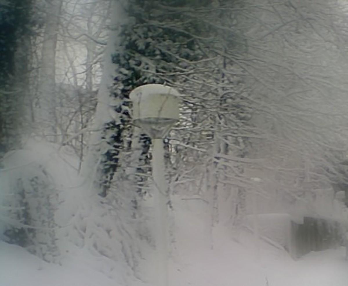 Winter scene 2 - blurred edges