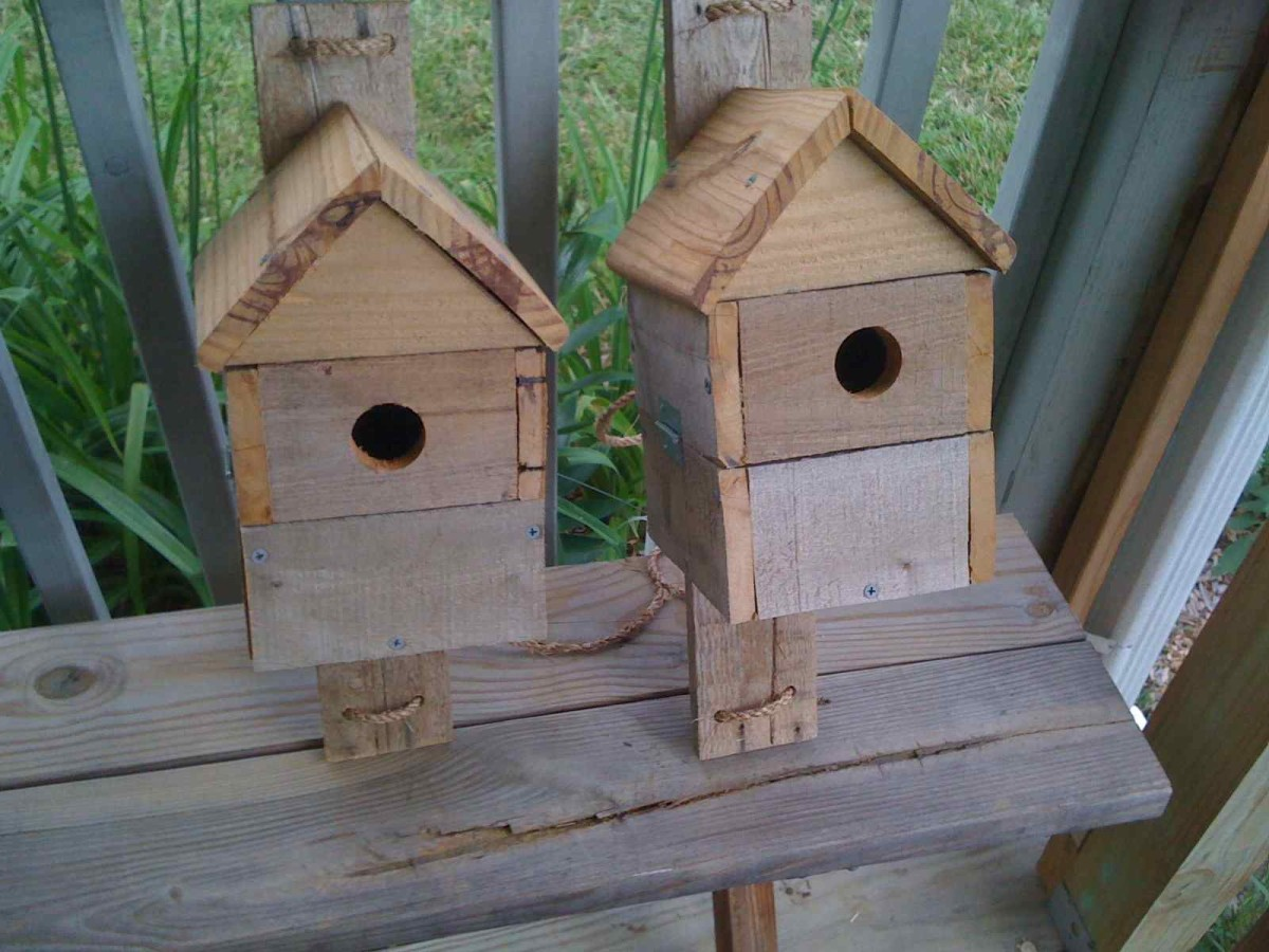 I gave the first three blue bird houses to my mom, sister and nieces.  They all live in coastal NC, well within the bluebirds range.  All three report new tenants. My sister was able confirm her residents were Carolina wrens.
