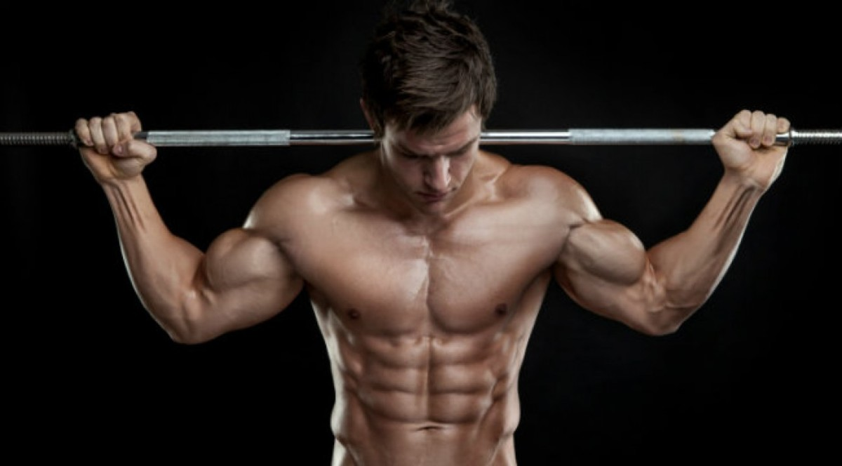 The Best Strength Training Program for Men - Vanity Muscles