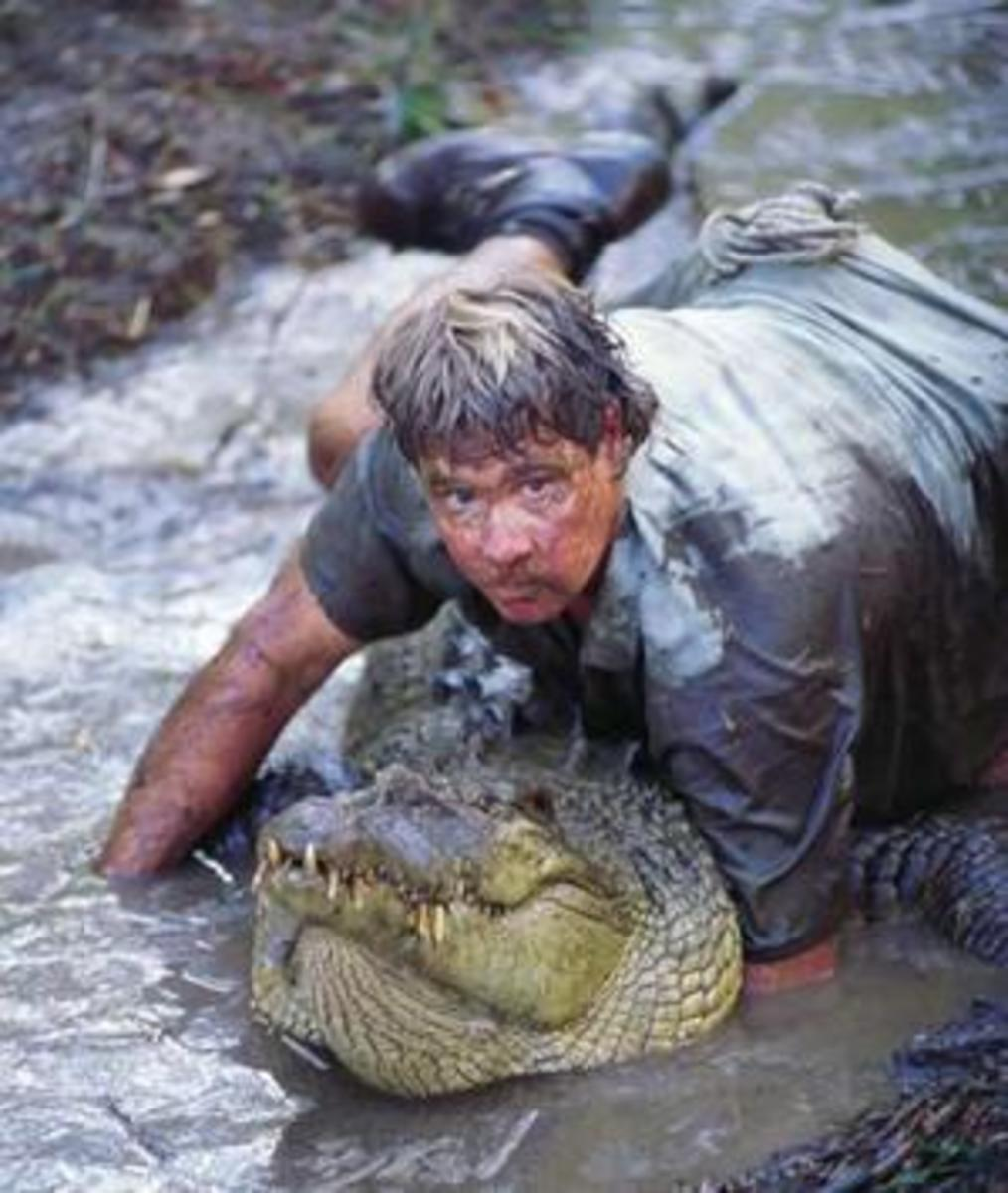Steve Irwin Crocodile Hunter (read Lover)