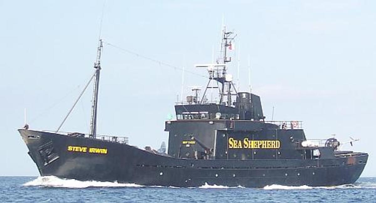 'MV Steve Irwin' renamed to honor Steve Irwin