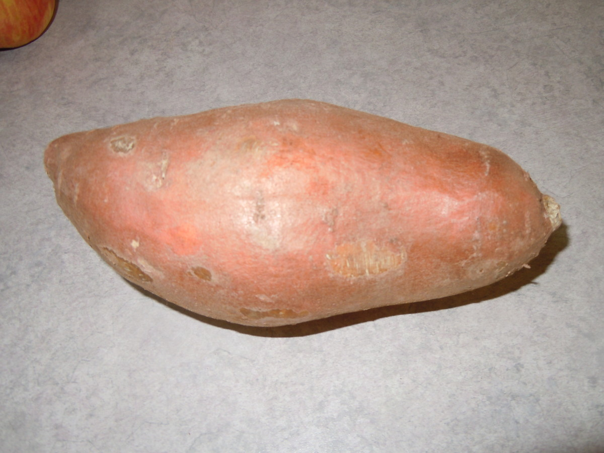 Typical Sweet Potato
