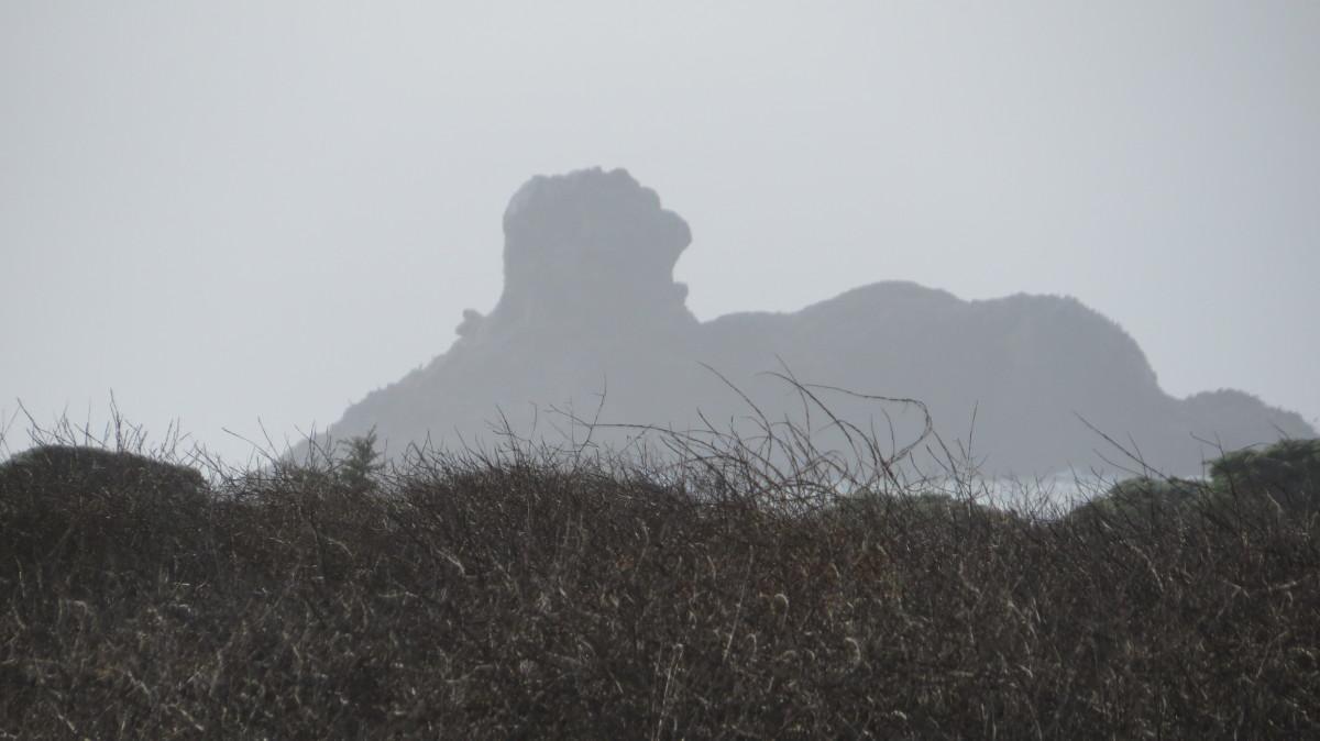 a-day-at-the-piedras-blancas-light-station-near-san-simeon-ca
