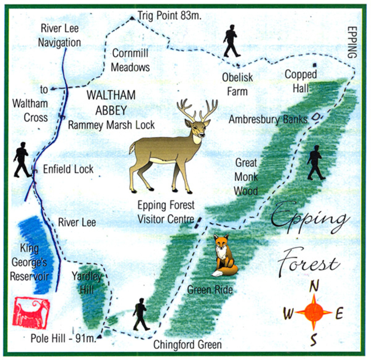 Fancy a real challenge? The Epping Forest Challenge Walk might be up your street