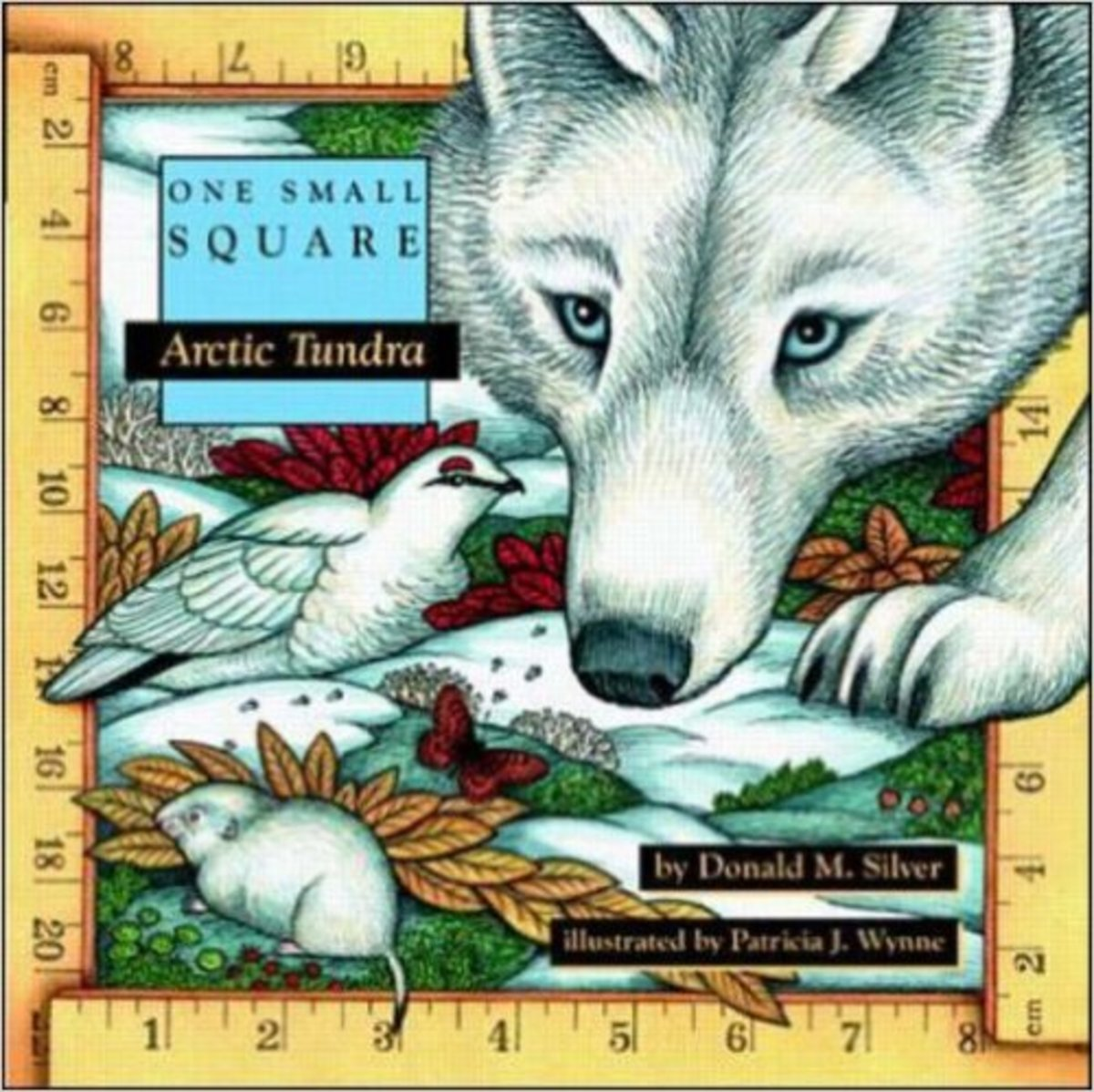 Arctic Tundra by Donald Silver - Images  are from amazon.com.