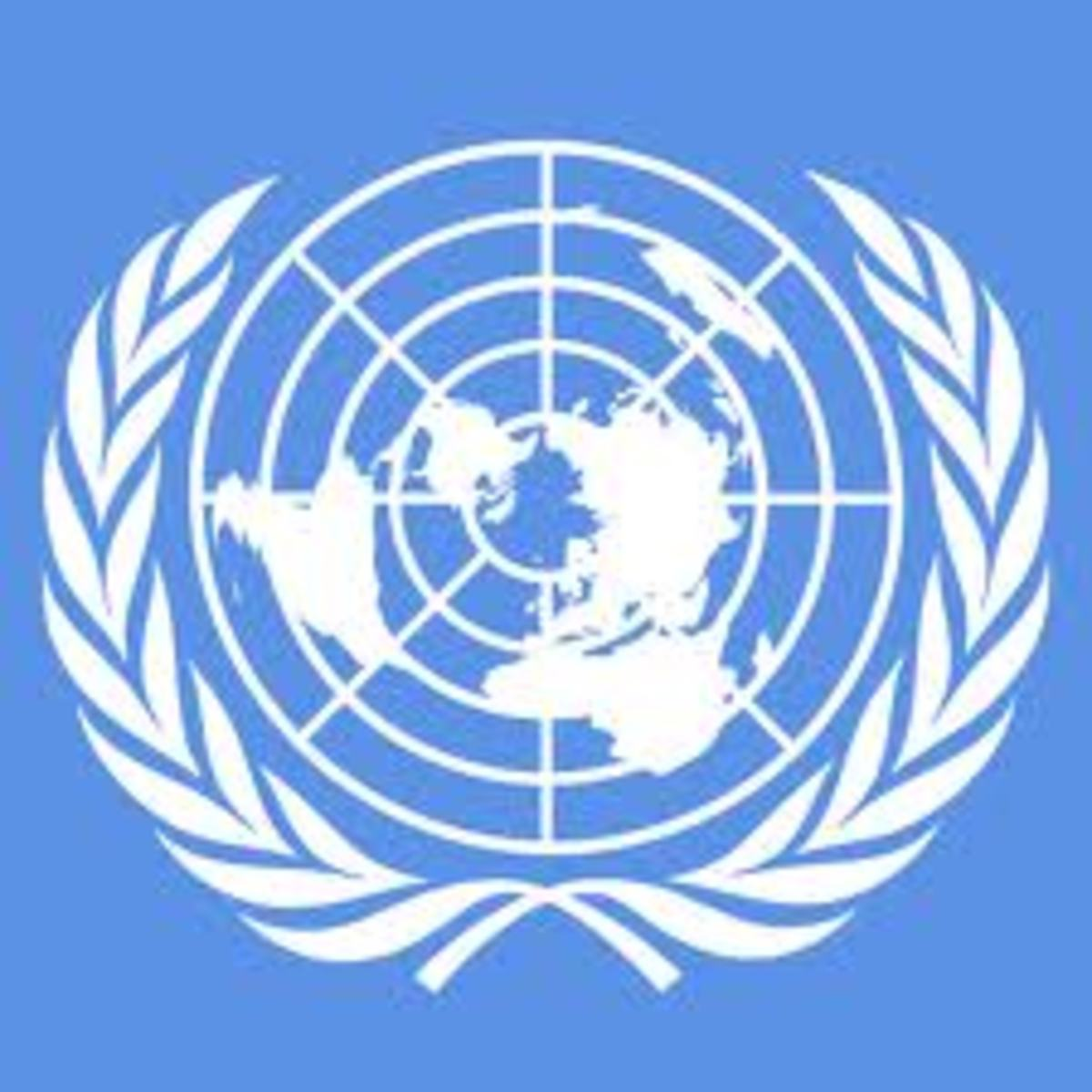 An entity that was designed to act as a One World Government!