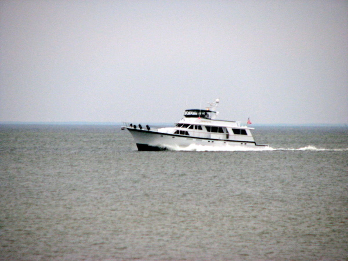 A boat passes through a portion of Chessie's Chesapeake Bay home on the southern tip of the Eastern Shore of Virginia. This photo was taken in Cape Charles, Northampton County, Virginia.