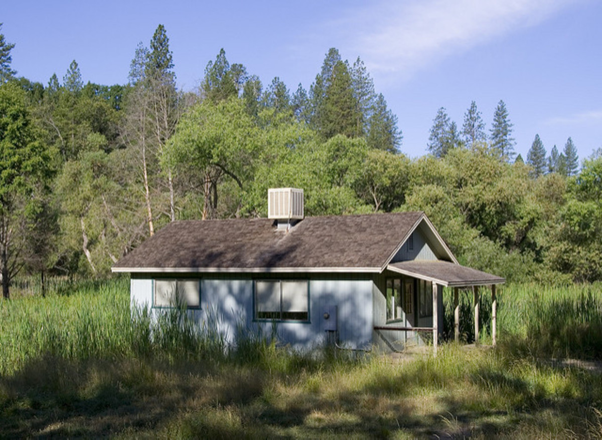 An old shack surrounded by weeds; seeming old, but looks well-kept up