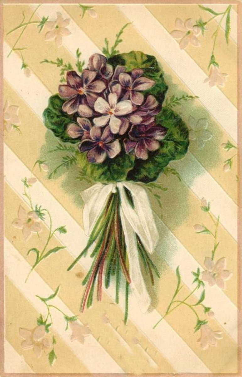 Vintage mother`s day card: violets nosegay with white ribbon