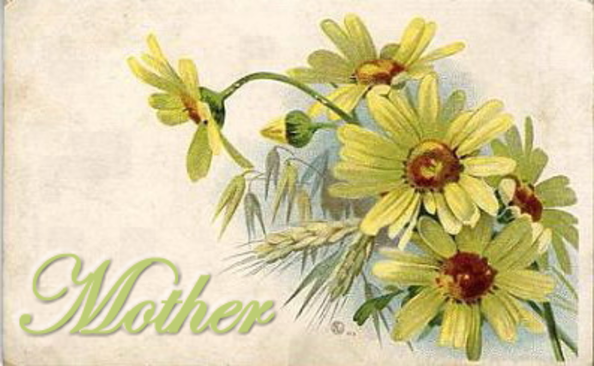Vintage Mother's Day card: Yellow daisies