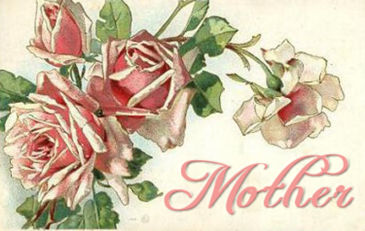 Vintage mother`s day card: pink and red roses