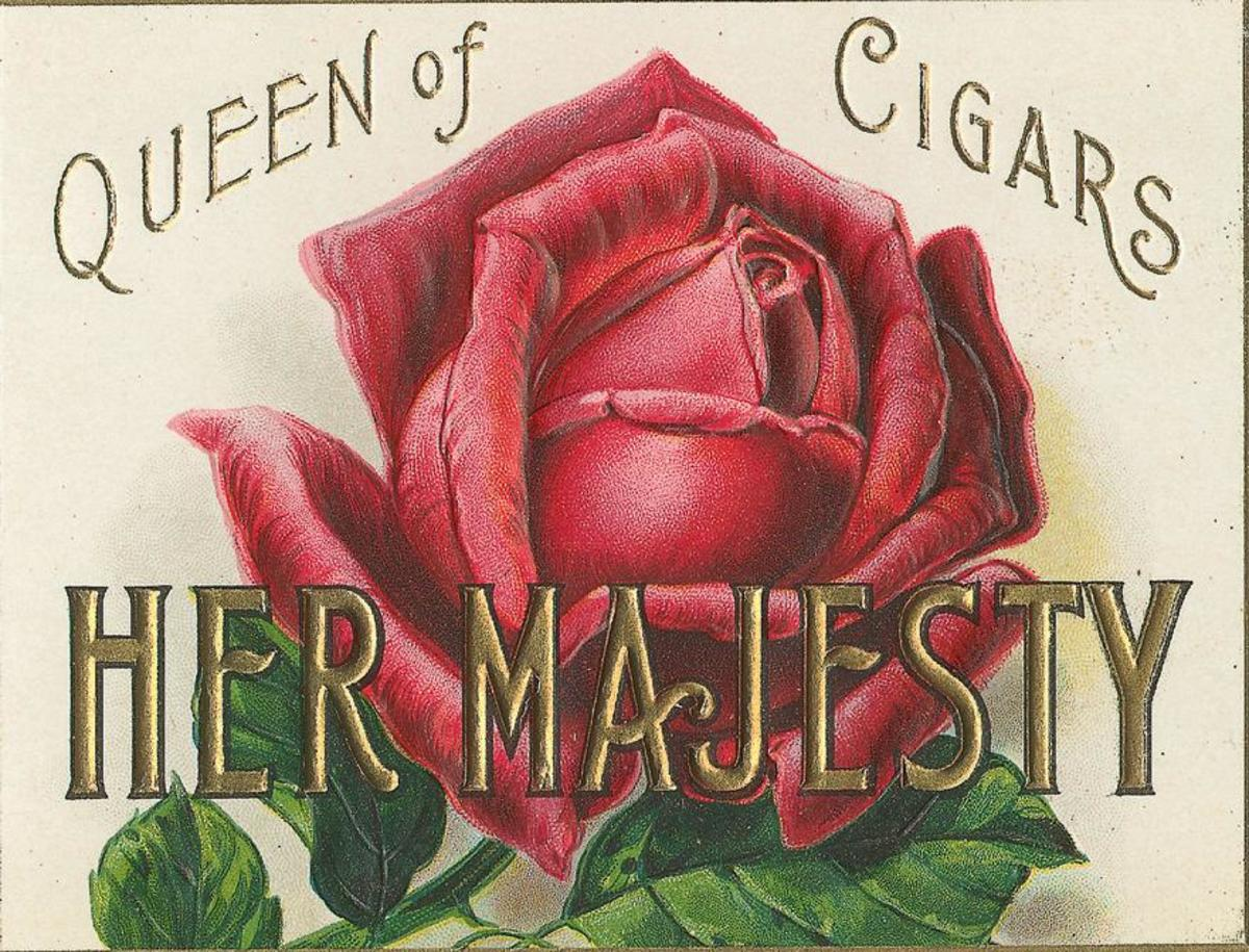 "Vintage Mother's Day card: Red rose cigar label ""Her Majesty"""