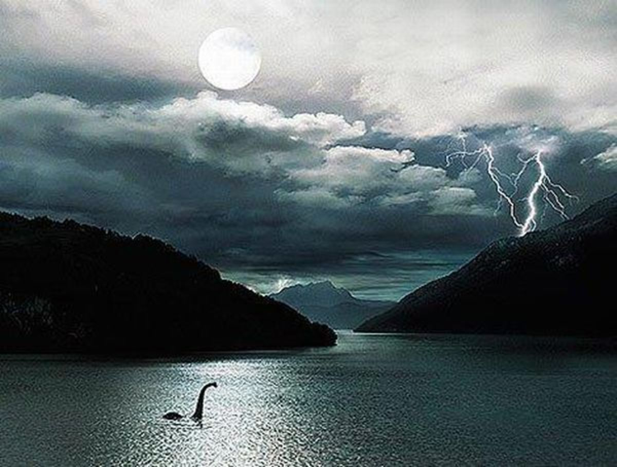 Nessie in the Night