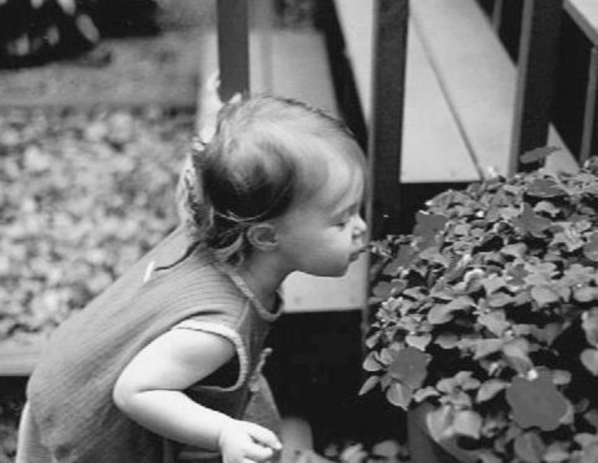 The Horror of Toxoplasmosis Gondii Parasite In Pregancy.Our beautiful granddaughter