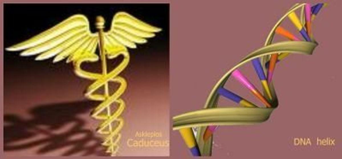Caduceus ~ DNA helix
