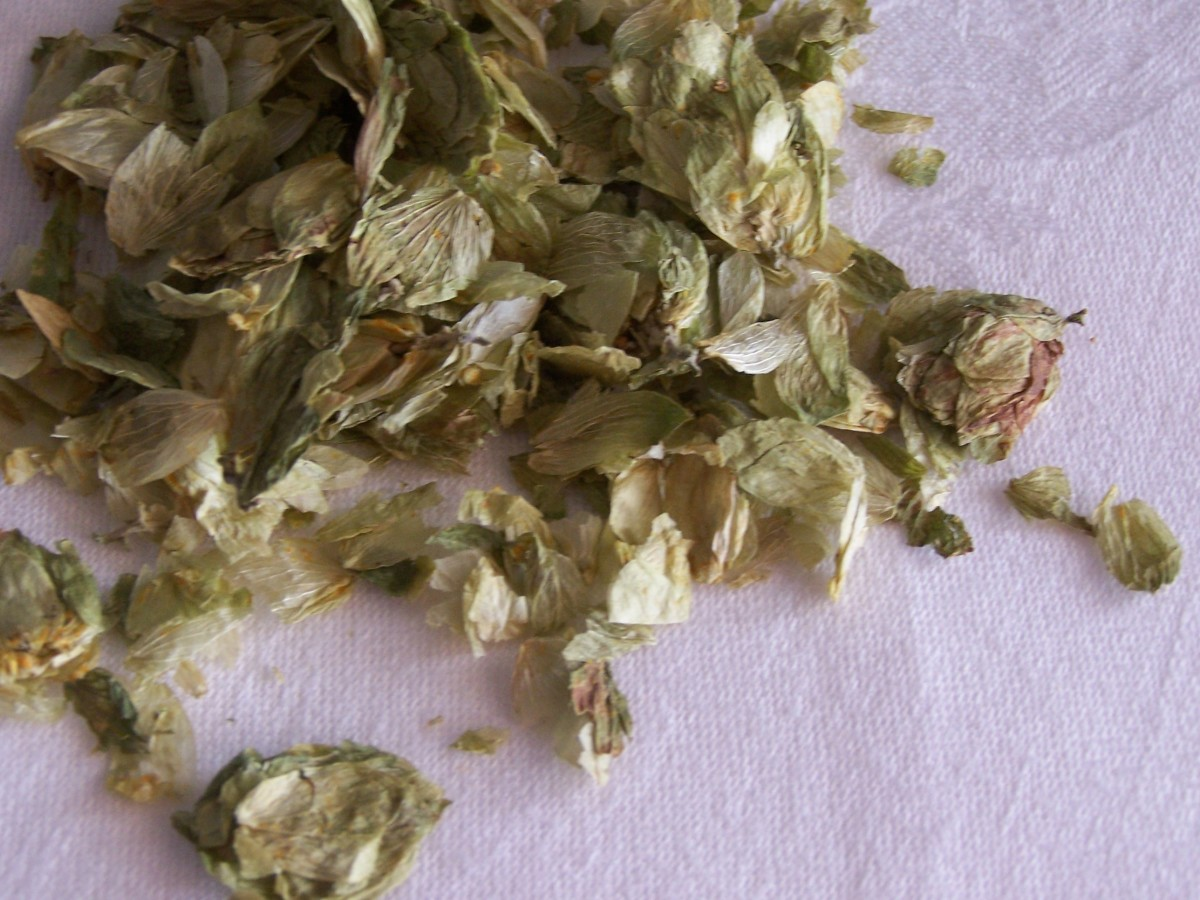 Dry Hop Flowers