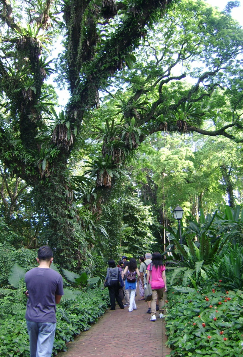 Spice Garden at Fort Canning Park, Singapore -- Showcase of Southeast Asian Herbs and Spices