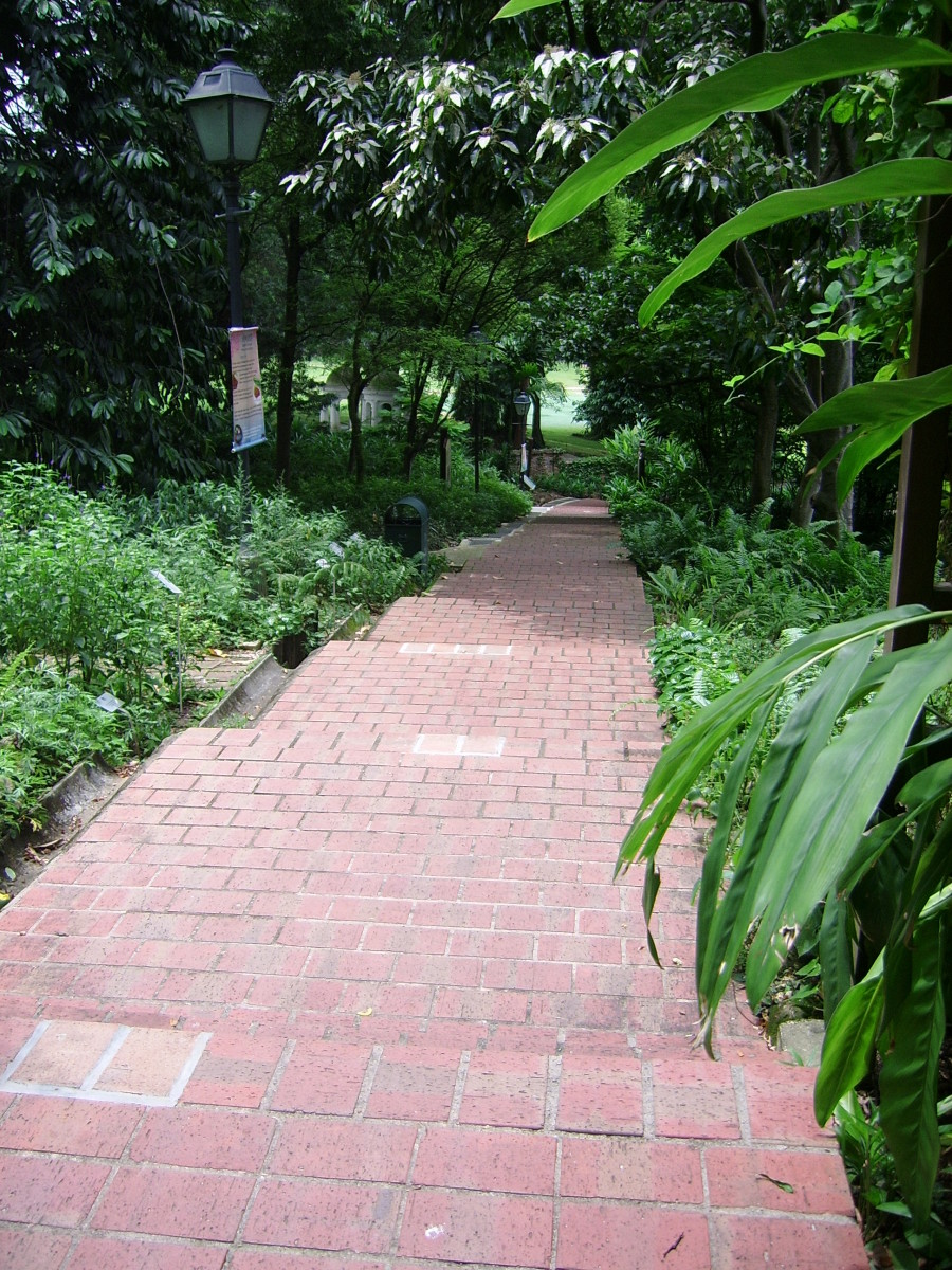 Sloping sections with steps make the Spice Garden trail a challenge for the not-so-fit. Wear comfortable shoes when you visit!