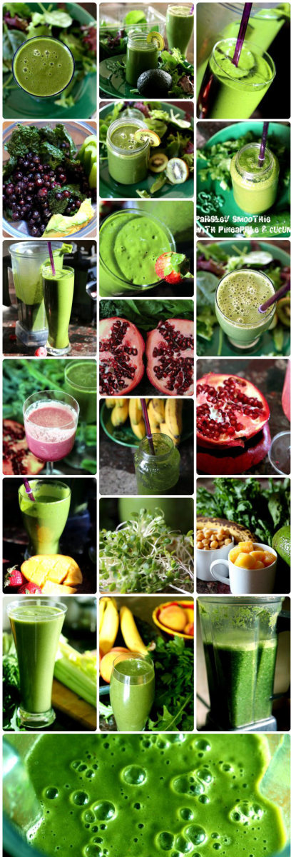 Vitamix Blender: Green Smoothies and Other Great Recipes for a Healthier Lifestyle