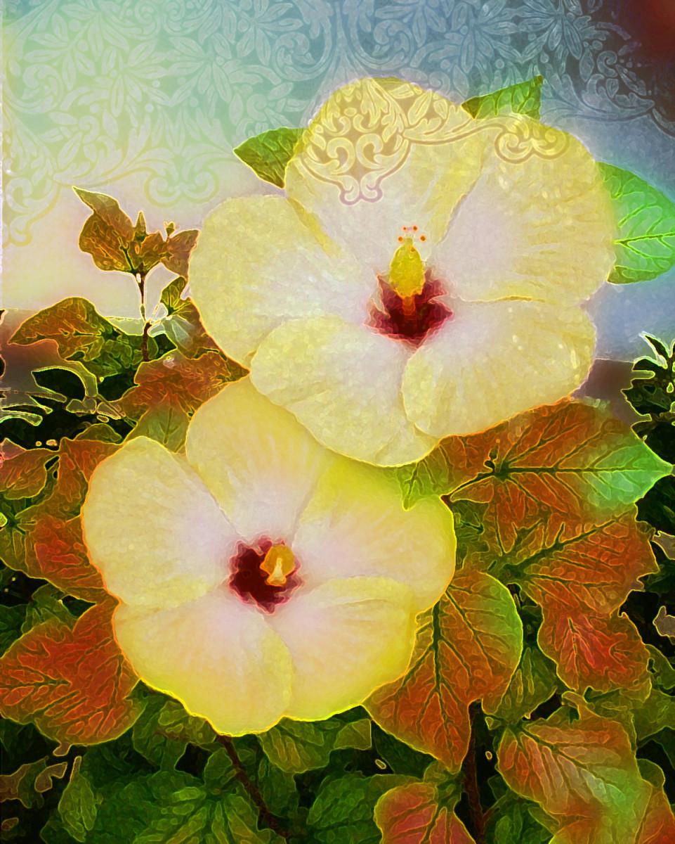 Glorious Hibiscus - Digital Creation RE Kongaika