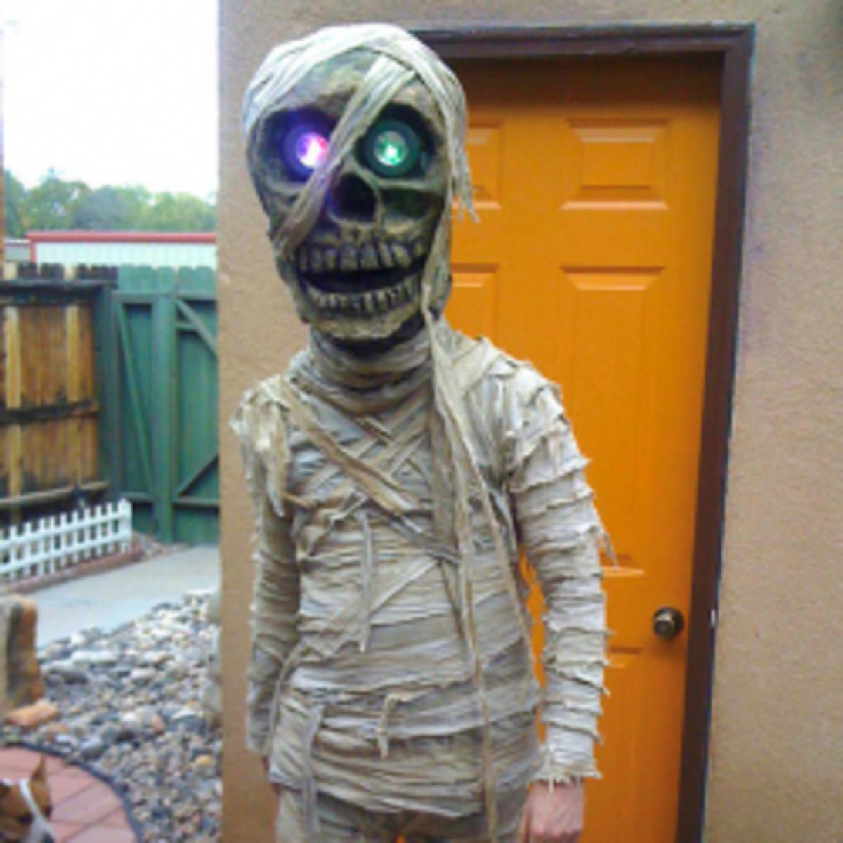 Homemade Fancy Dress Ideas & DIY Halloween Costumes