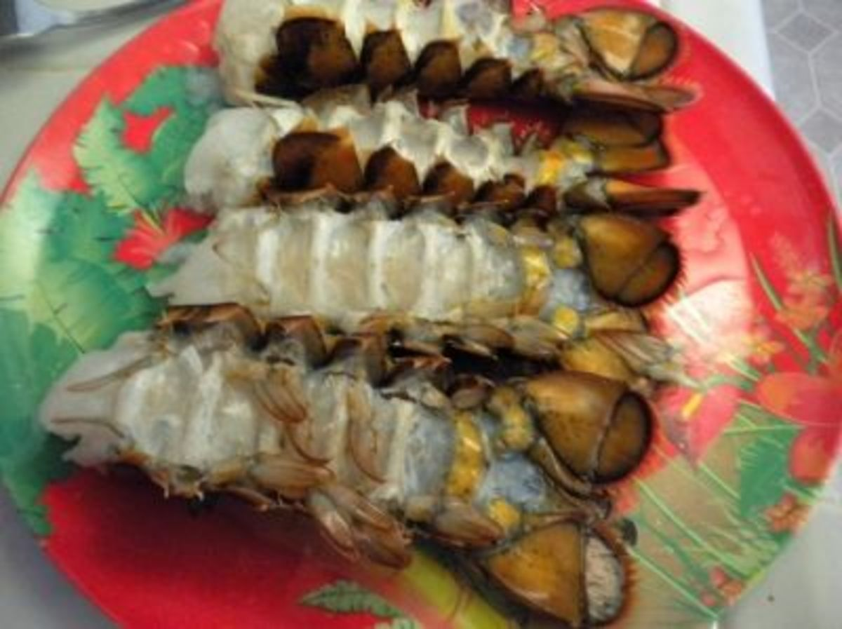 Thawed, Uncooked Lobster Tails