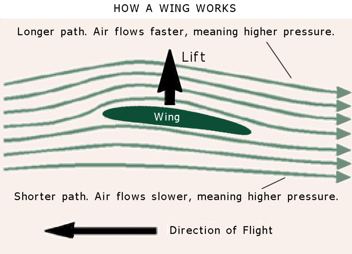 Different air speed above and below a wing means lift.
