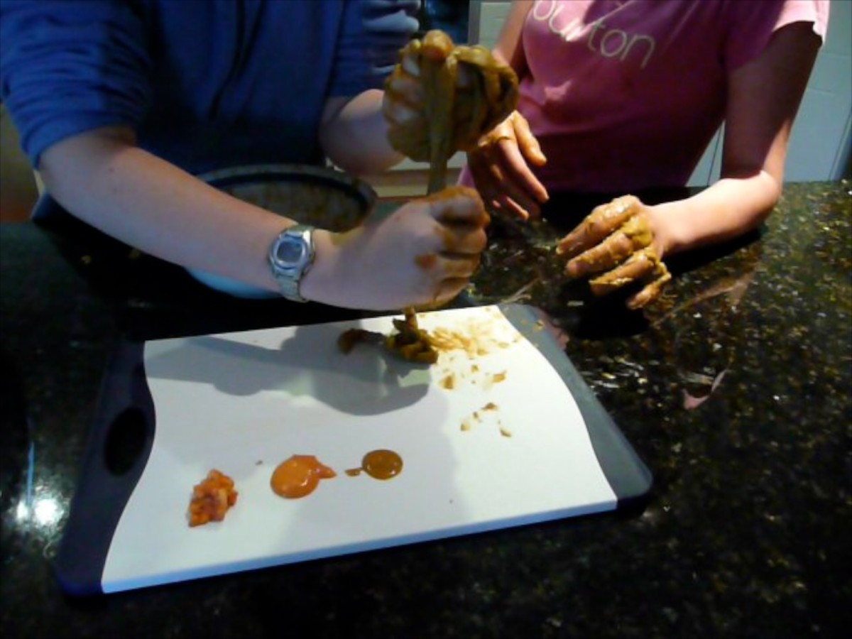 Project a success - we have simulated digestion and made poop.