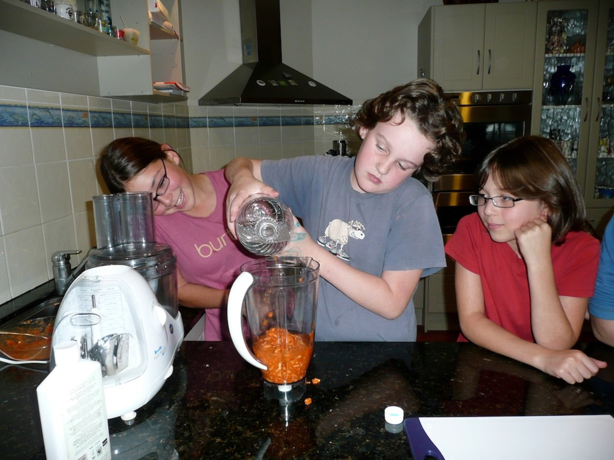 Our food in the blender, we add vinegar to simulate the stomach acids