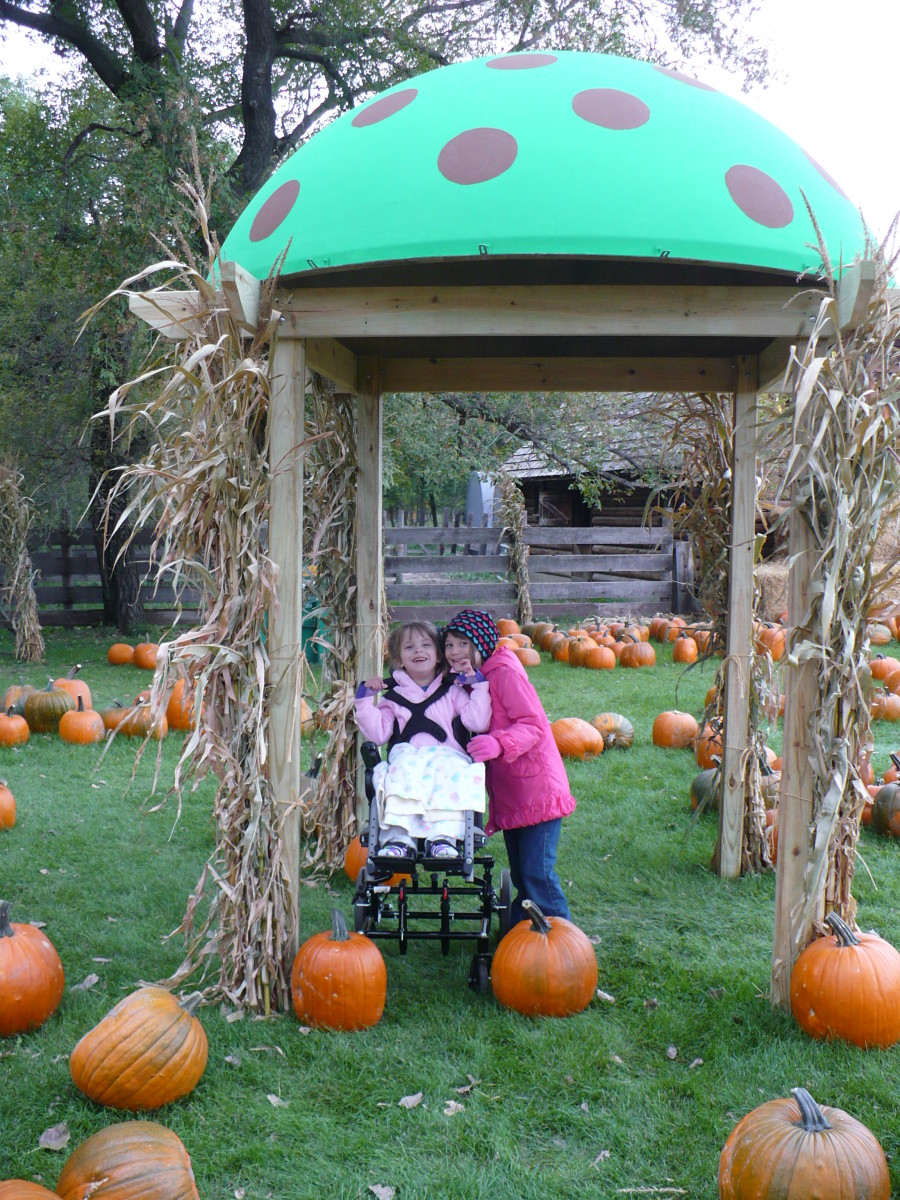 Papa's Pumpkin Patch provides many photo opportunities