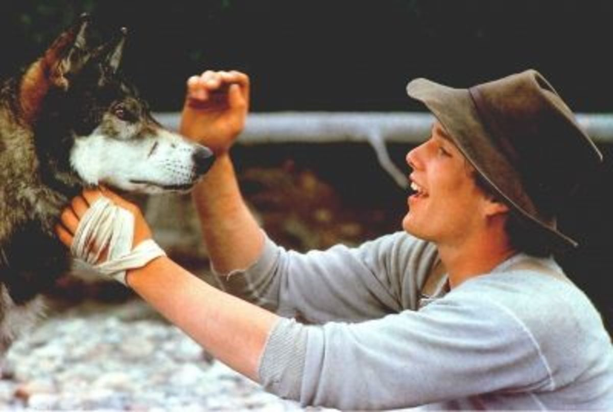 An emotive performance from Jed in White Fang