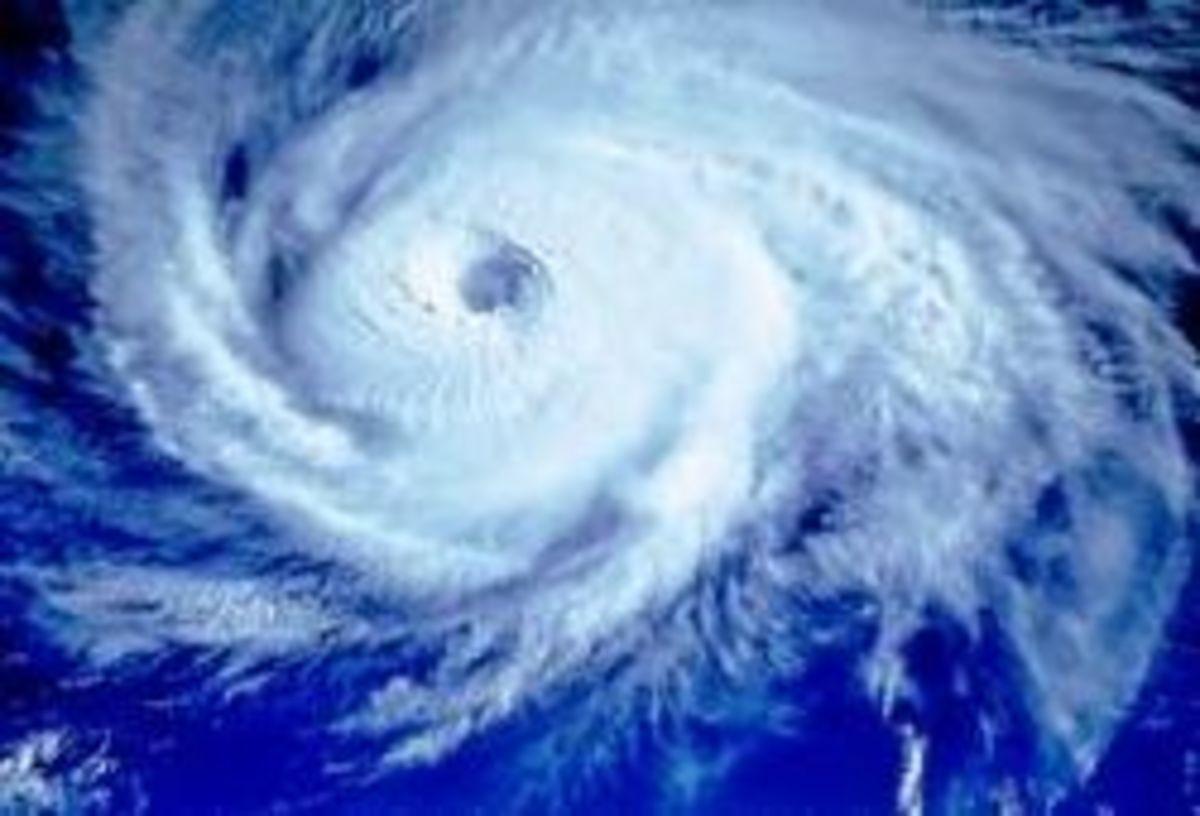 typhoon-game.jpg