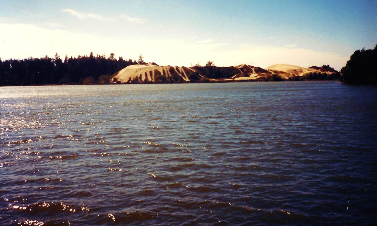 Sand Dunes National Recreation Area near Coos Bay, Oregon.