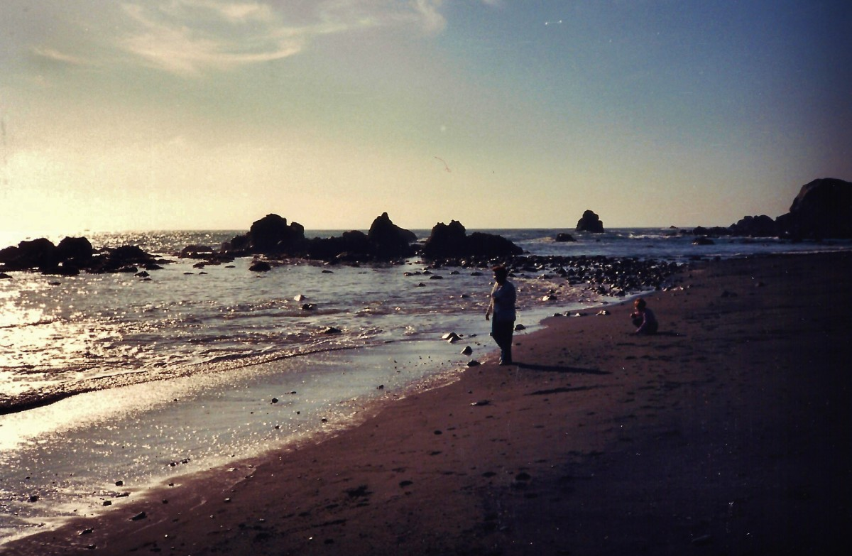 Beach scene - southern Oregon coast