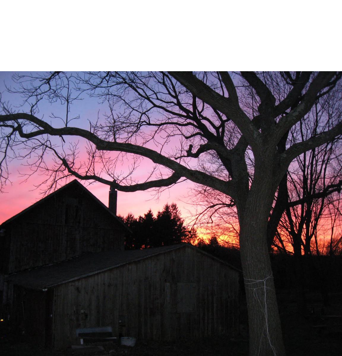 The scary old barn, from arrowacresfarm.blogspot.com