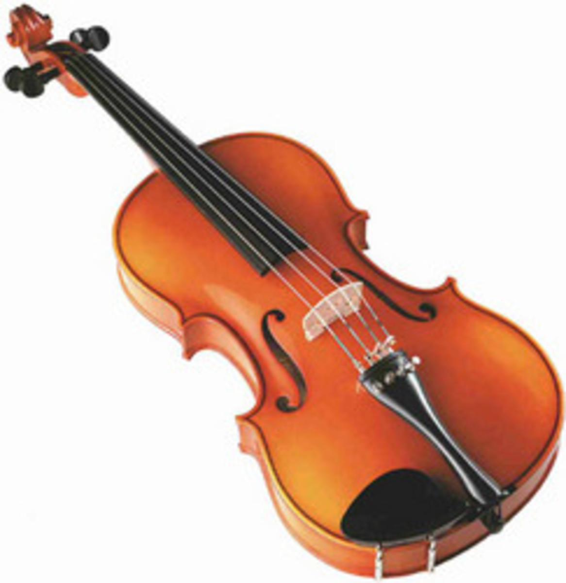 Violin with catgut strings, from trade.indiamart.com
