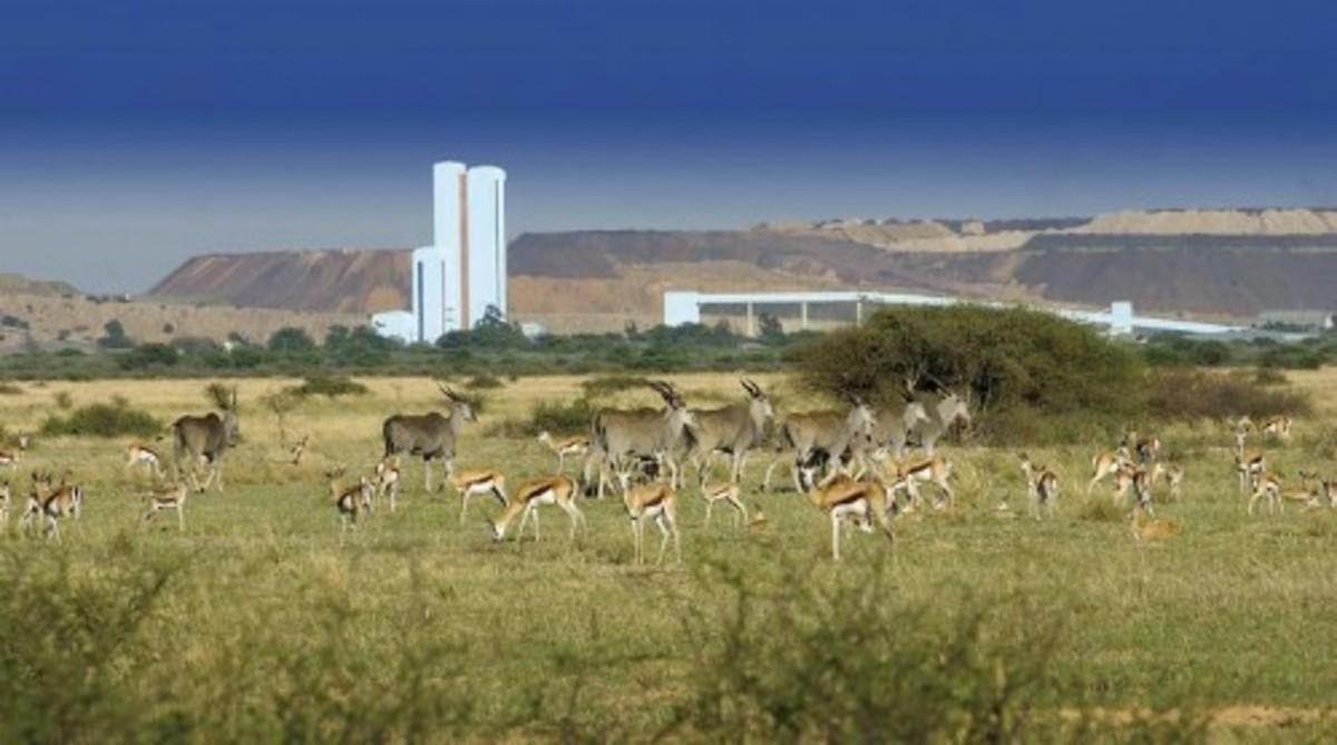 Jwana Game Park
