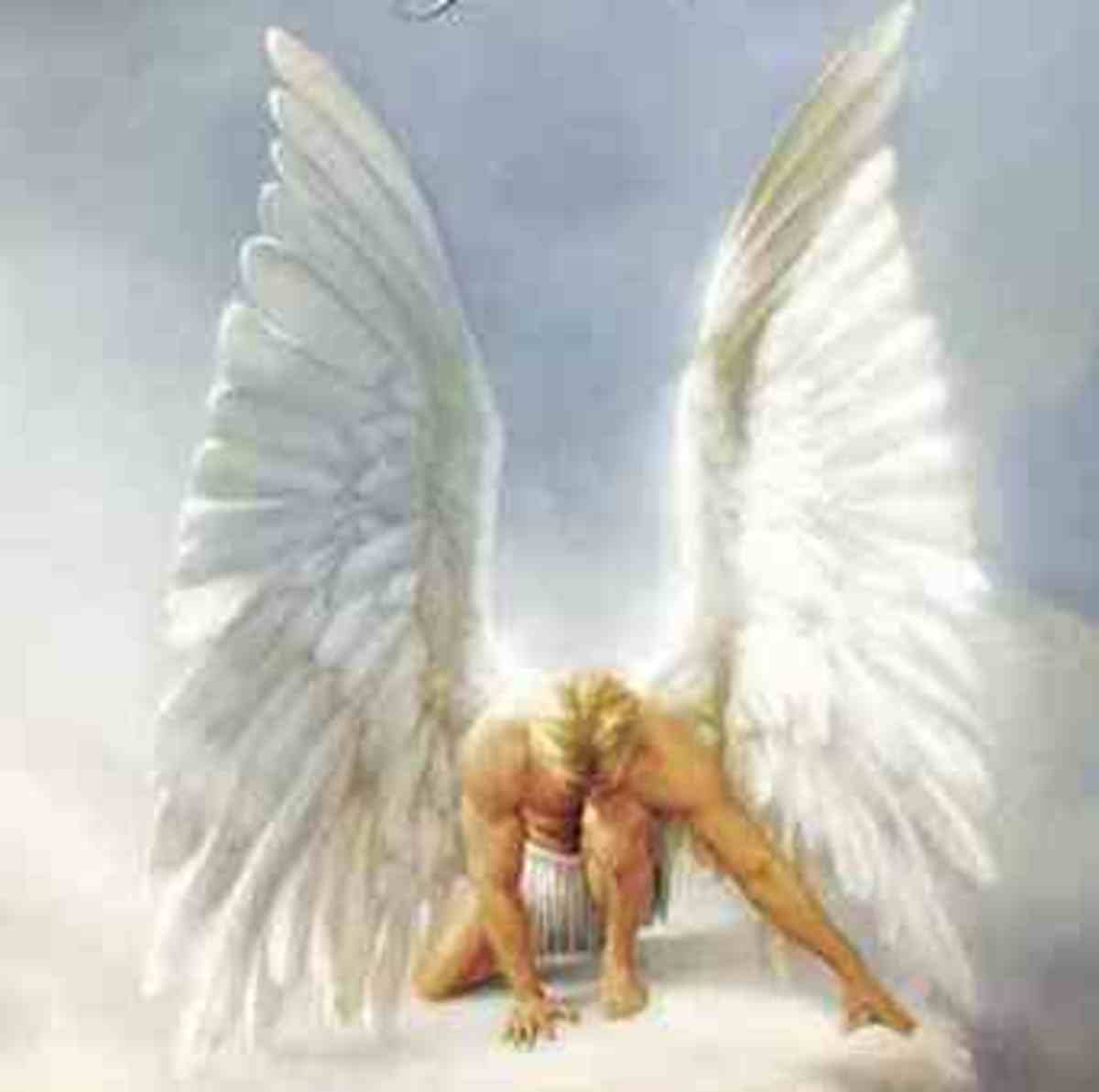 angels-do-you-believe-they-help-you-in-times-of-emotional-or-physical-crisis