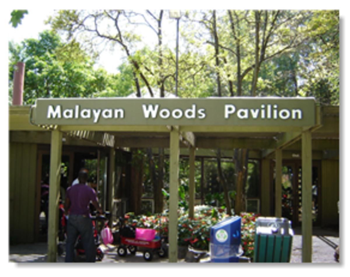 Indo-Malayan Pavilion Toronto Zoo