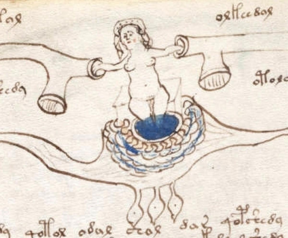 The Voynich Manuscript - Naked Ladies!