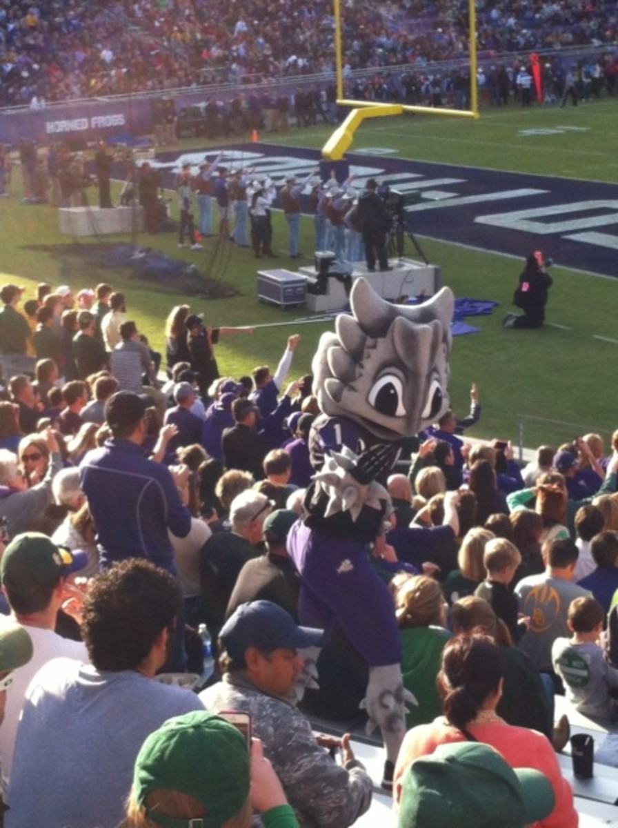 Superfrog in the crowd