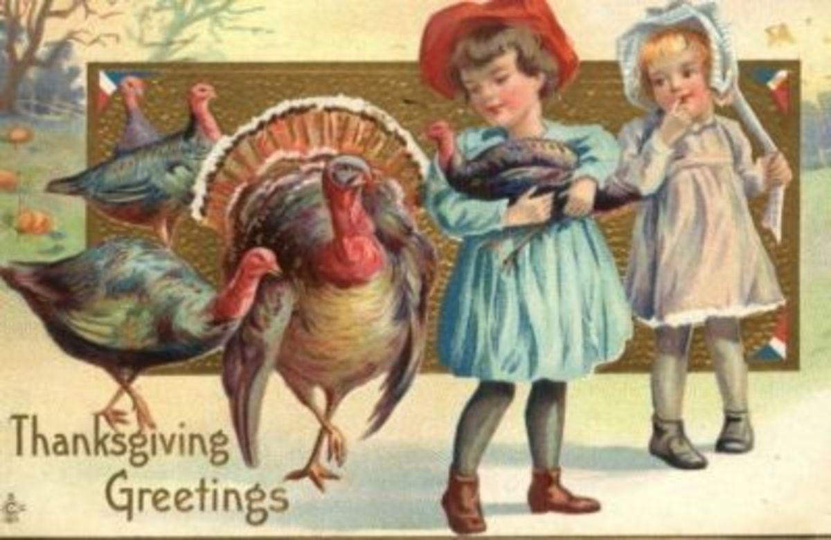 Pretty Girls, Pretty Turkeys