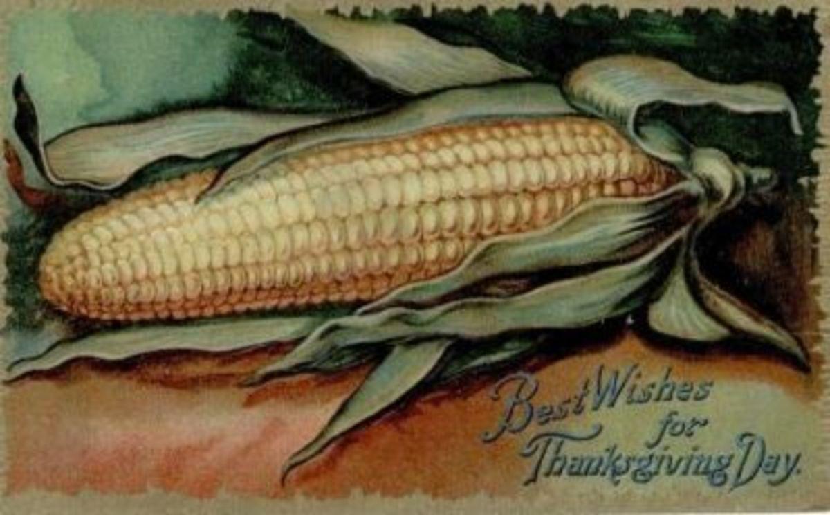 Pure Corn
