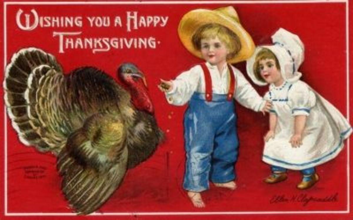 Nice turkey.