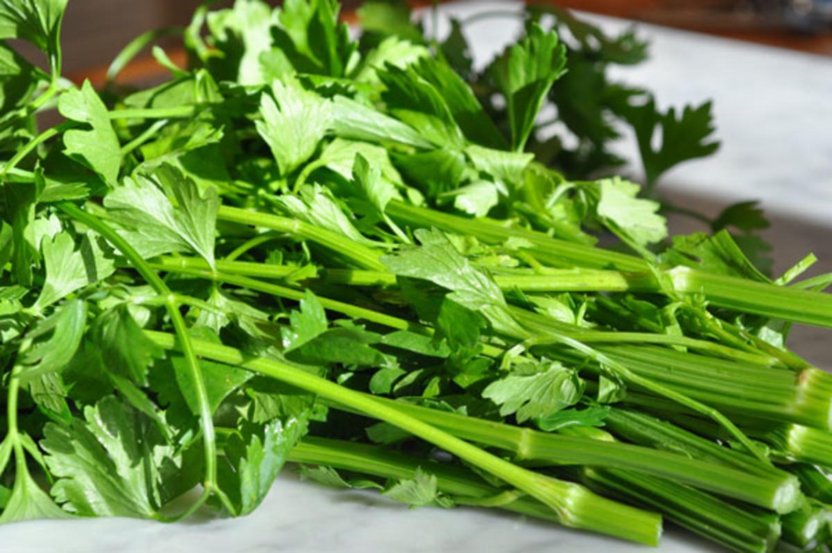 Asian Celery Image: © Siu Ling Hui