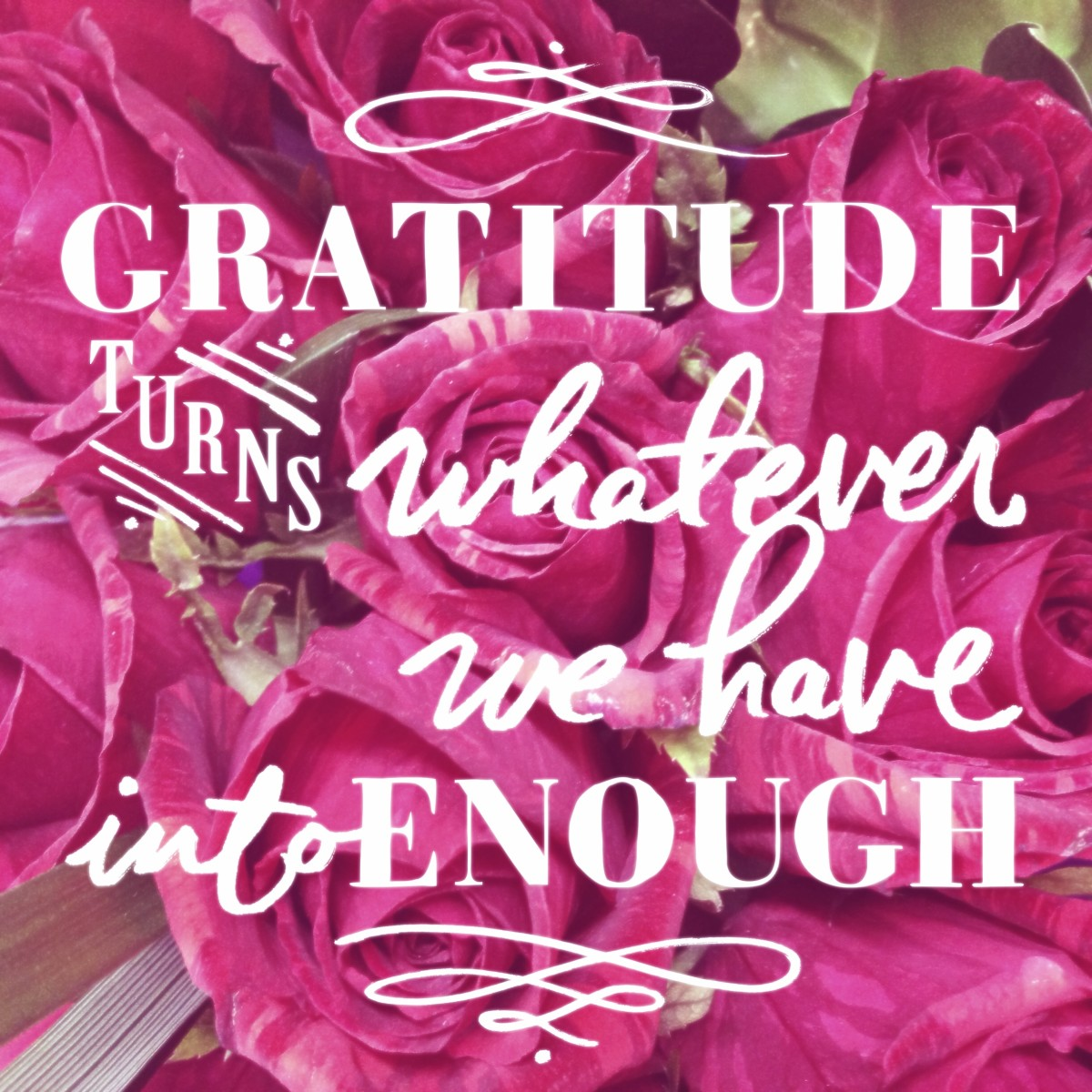 Gratitude turns whatever we have into enough.
